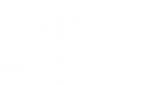 Tow Youth Justice Institute