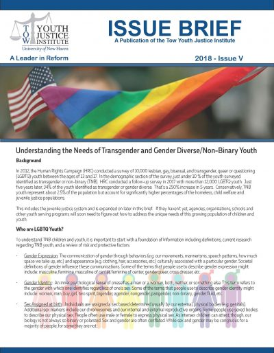 LGBTQ Youth Issue Brief 7-11-18 Final_Page_1