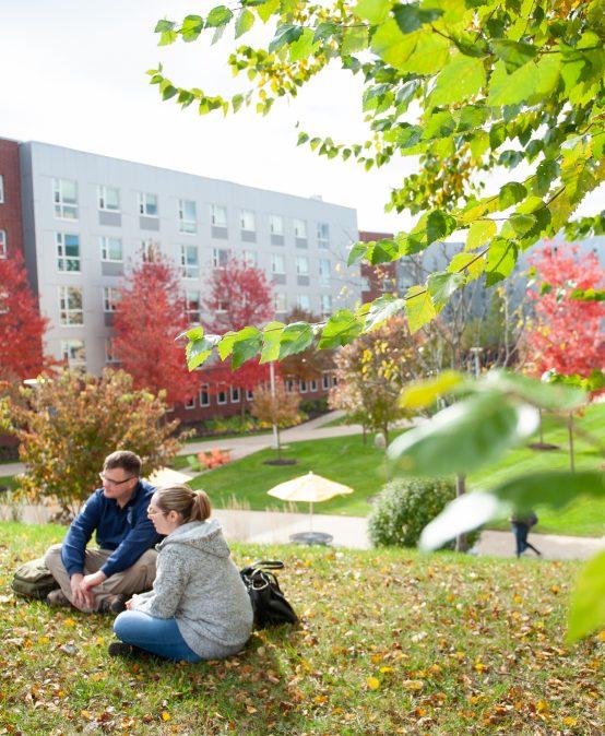 University of New Haven Partners